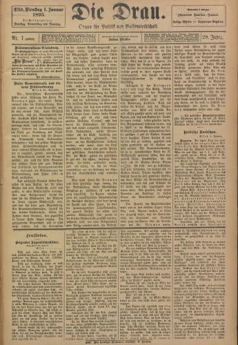 Die Drau, 1895